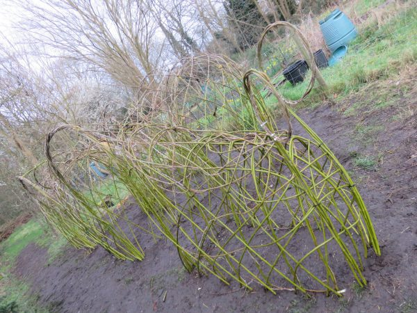 willow sculpture sutton ecology centre